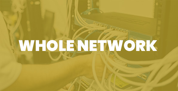 whole network